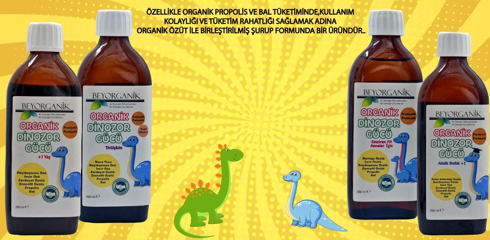 Beyorganik - Zehra Güzelocak
